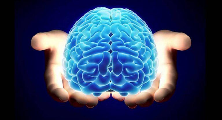 ¿Qué es la esclerosis múltiple? Vol. I