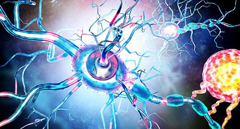 ¿Qué es ser una esclerótica?